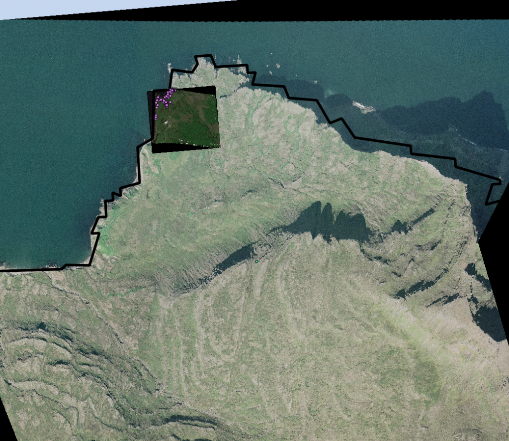 ISN2004/Lambert (EPSG: 5325 projection of Skalanes ('on the fly') with the Google Earth Image, Eider points and coastline.